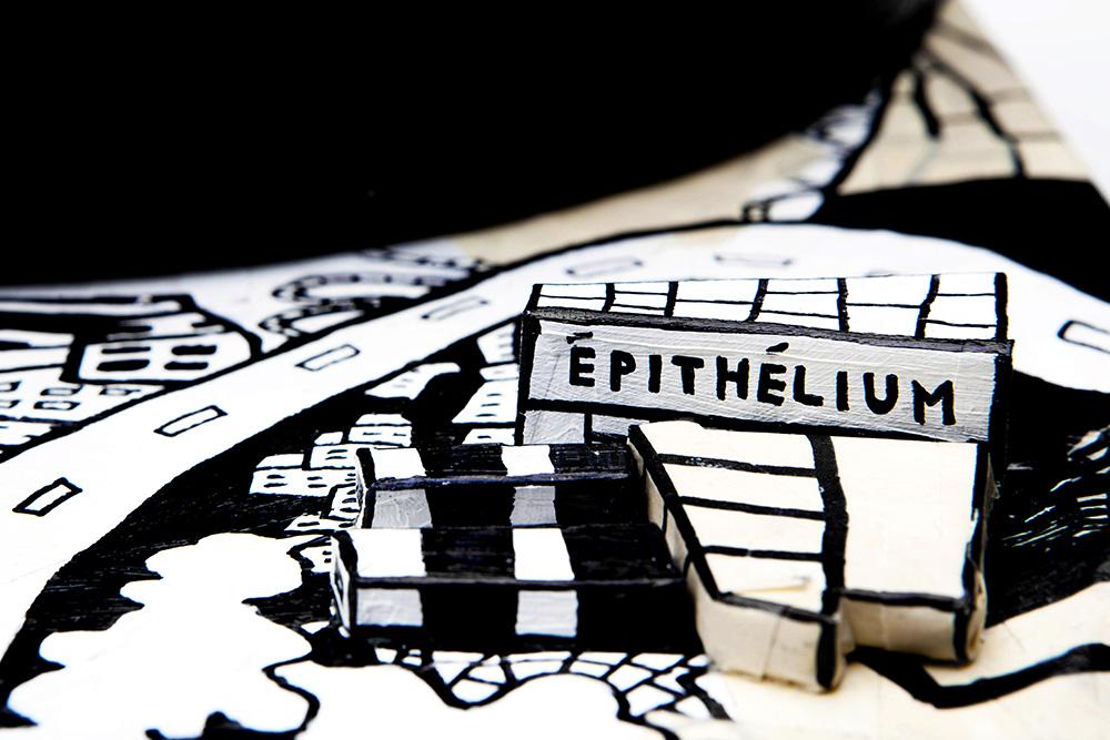 epitheliumDetail1