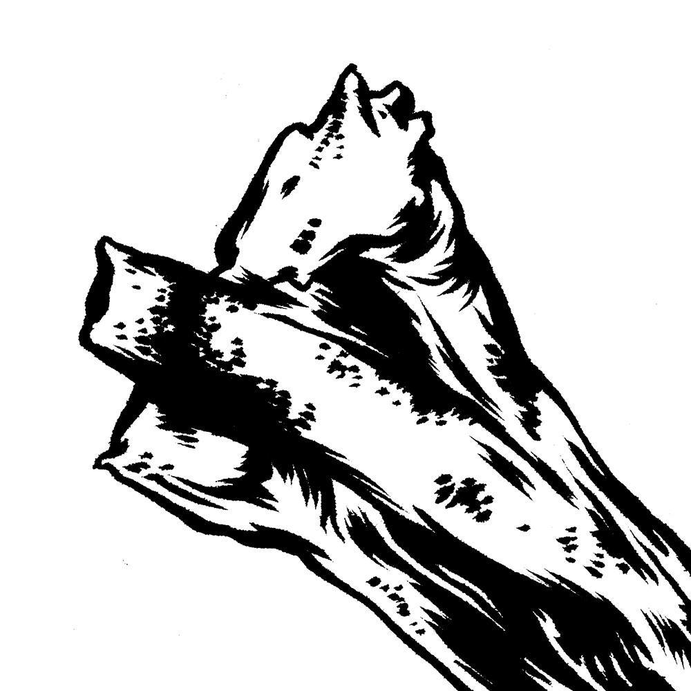 wildBoar2